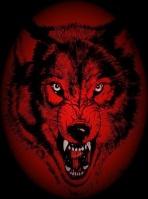 vedo-wolfpack