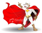 Super Boi