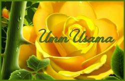 Umm Usama Al'isbaniya