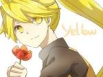 YellowOfTheViridianForest