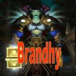 Brandhy