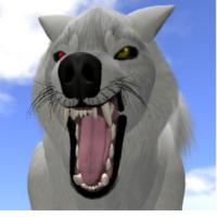 Techwolf77