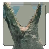 Raptorclaw