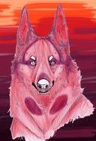 Lunarwolf22