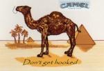 CamelCigars
