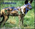 Elementsia