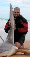 El Señor de los Tiburones
