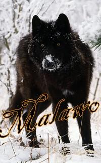 Malawo