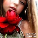 الوردة الحمراء