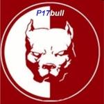 p17bull