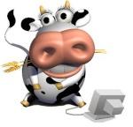 la Vache carrée