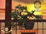 pierrines1