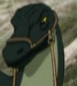 Dragonhatchling