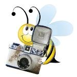 Photobee