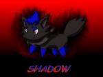 Shadow The Zorua1023