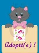 CARAMEL chat mâle noir 18 mois (NALA 85) 1523560651