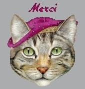 Perdu chat Gaïa à Neuville de Poitou (Vienne - 86) 2109361401