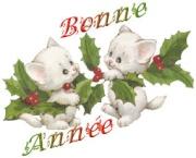Bonne et Heureuse Année 2013...... 2668527677