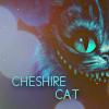 Chesire cat