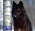 T-Wolf