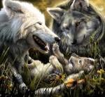 BigMacWerewolf
