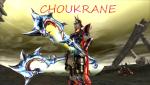 Chouk