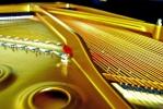 YLG Pianonerd