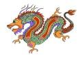 dragon49