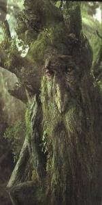 Hagrid l'Ent