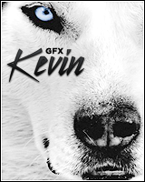 Kevin.