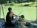 La pêche de la carpe en batterie 466-22