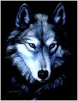 Wolf44