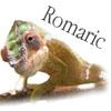 Romaric