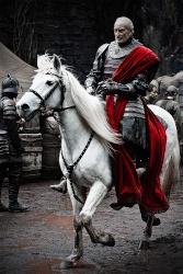 Seigneur Edvard Stalion