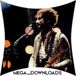 mega_downloads