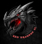 Red Dragons Airsoft 31 67-9