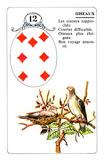 Méthode tirage 36 cartes 3004536492