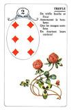 Carte 2 - le trèfle 3706918814