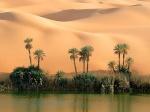 Dune86