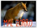 [LMT] MaL ZoRRo