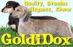 GoldiDox