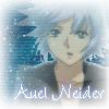 Auel Neider