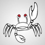 ptit crabe
