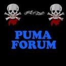 Puma_