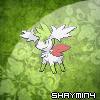 Shaymin4à l'orbe Noctali