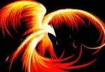 Dark Phoenix919
