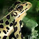 Tathis
