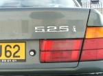 rottweiller 62