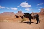 Frontier Ranger Jack