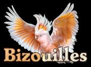 Bizouilles